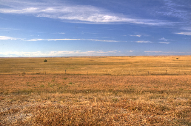 2. You need wide open spaces.