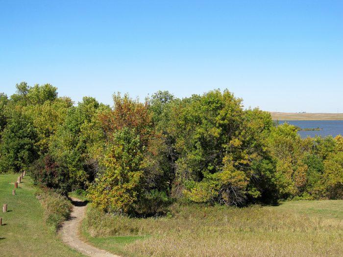 1. Moraine Loop Trail