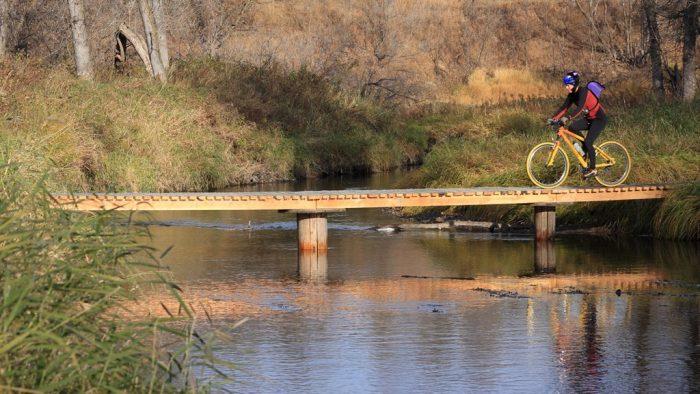 2. Turtle River