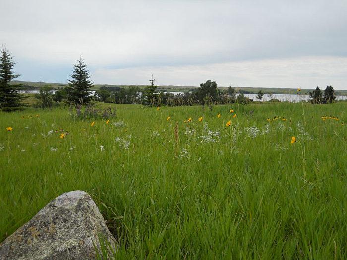 4. Rolling Prairie Loop Trail - 1 mile