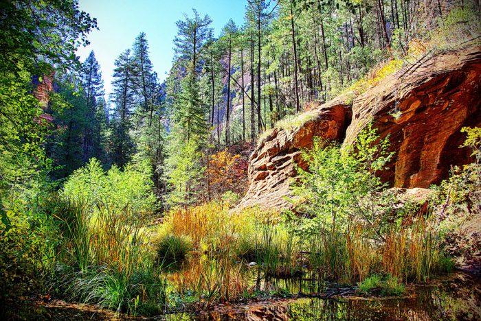 6. Oak Creek Canyon