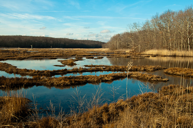 4. State parks in Connecticut are full of incredible diversity, offering marshes, beach, forest and waterfalls all in one spot!