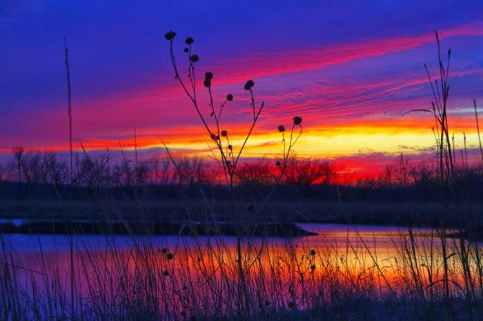 7. Baker Wetlands (Lawrence)