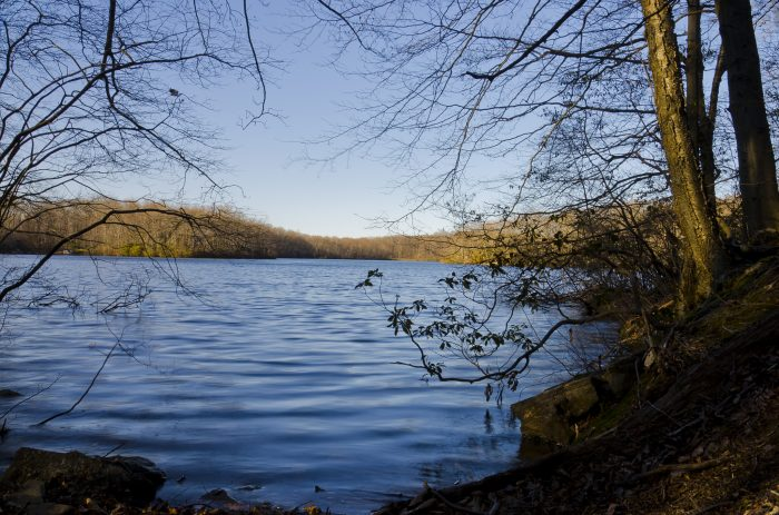 5. But if the endless ocean is too much, Miller's Pond gives you a water view with the surrounding trees.