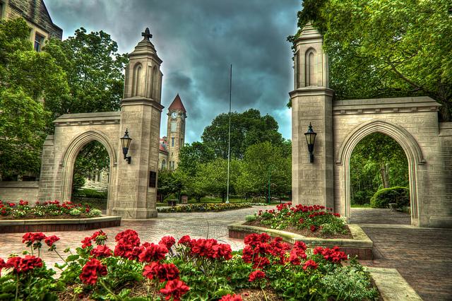 2. Indiana University - Bloomington