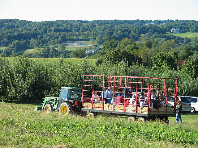 7. Hayrides in the fall...