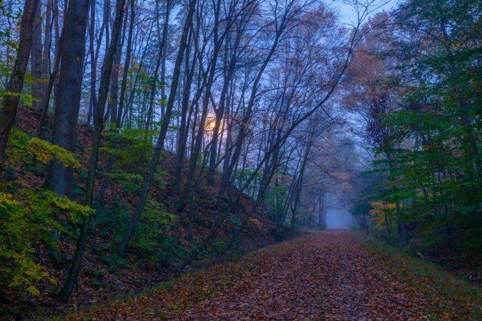 7. West Penn Trail