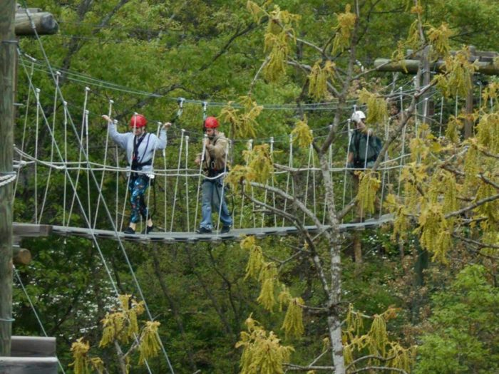 7. Branson Zipline and Canopy