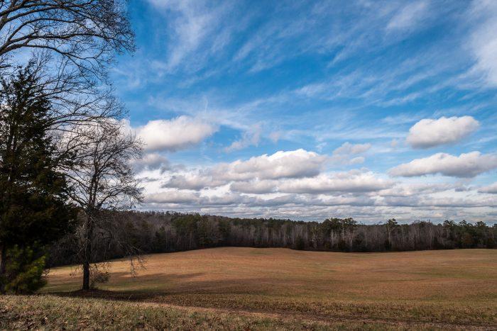 7. Chickamauga Battlefield