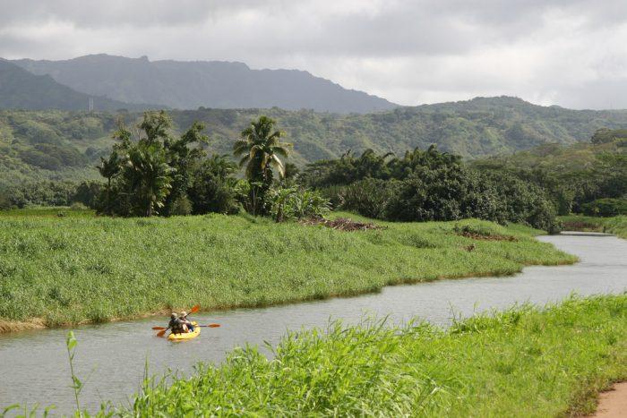 7. Hanalei River + Hanalei Bay