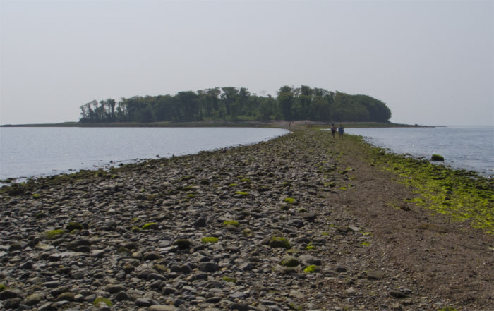 2. Charles Island, off Milford, can be walked to from Silver Sands State Park. But the path is only there during low tide!