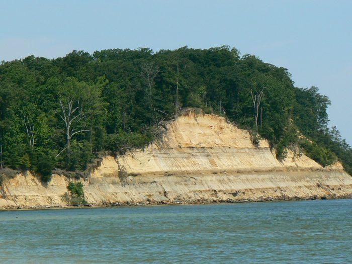 5. Calvert Cliffs