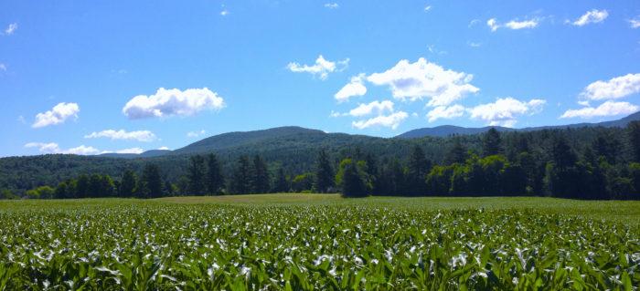 20.  The Vermont sky