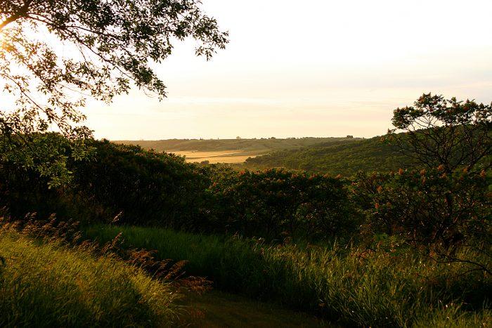6. Redestske Ridge Trail