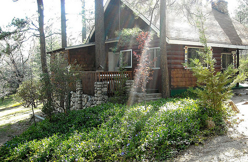 7. Knotty Pine Cabins in Idyllwild