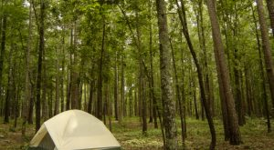 These 12 Rustic Spots In Arkansas Are Extraordinary For Camping