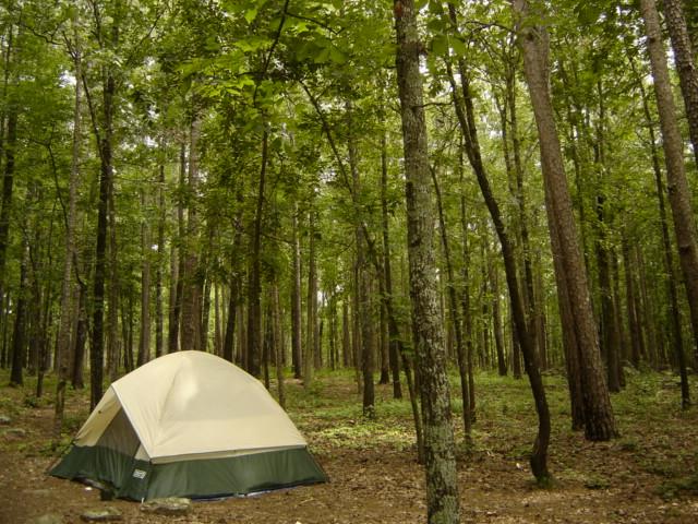 10. Dam Site Campground (Beaver Lake)