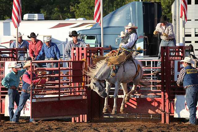 6. The first time you went to a real rodeo...