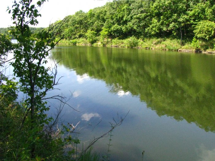 8. Cuivre River State Park