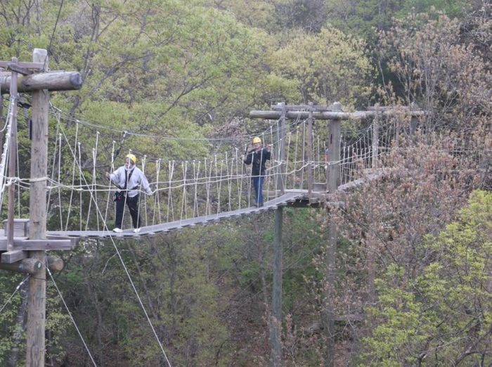 8. Branson Zipline and Canopy Tours