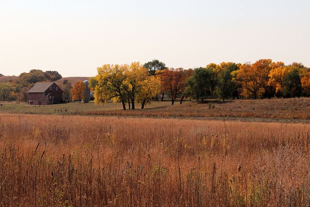 6. This farm in all of its fall beauty.
