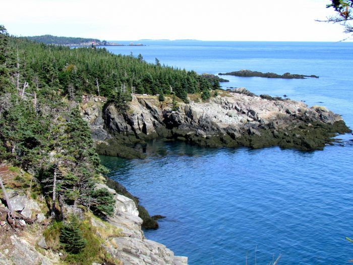 12. Take a long, coastal hike in Quoddy Head State Park.