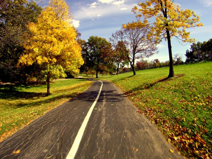 11. Ride your bike through Forest Park.