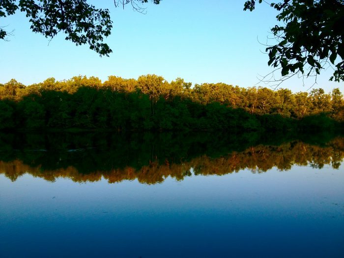 9. The Potomac Hike: Riverbend to Great Falls Park (Fairfax)