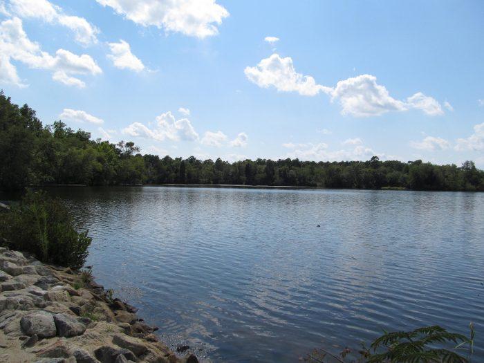 3. Parvin Lake, Elmer