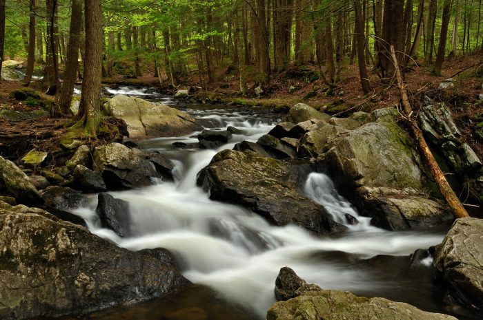 Take in the natural beauty at Thundering Brook.