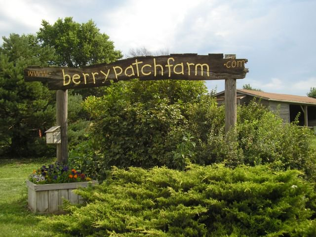 8. Pick your own fresh fruit at the Berry Patch in Nevada.