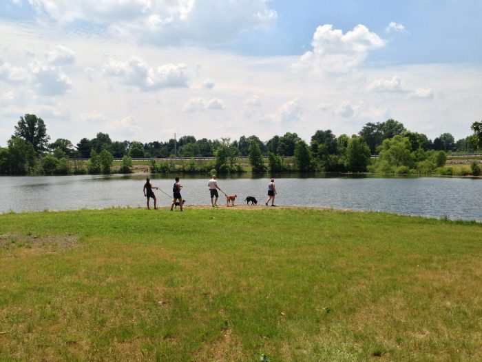 6. Mosquito Creek Lake (Trumbull County)