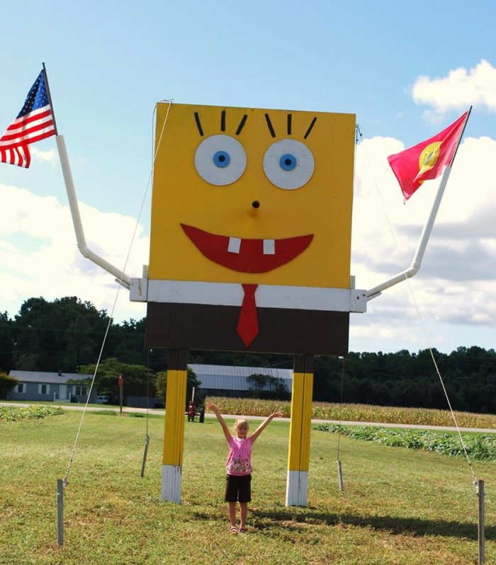 9. Spongebob overlooks Bowles Farm in Clements. A corn maze, petting zoo, and play area are just a few of the things you can do at this whimsical place.