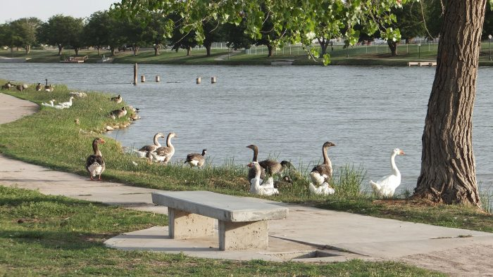 6. Carlsbad Riverfront Recreation Area, Carlsbad