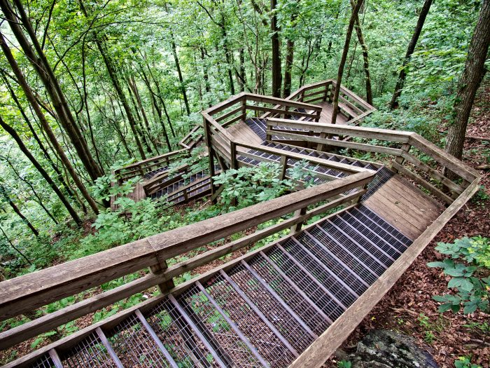 6. Amicalola Falls Trail