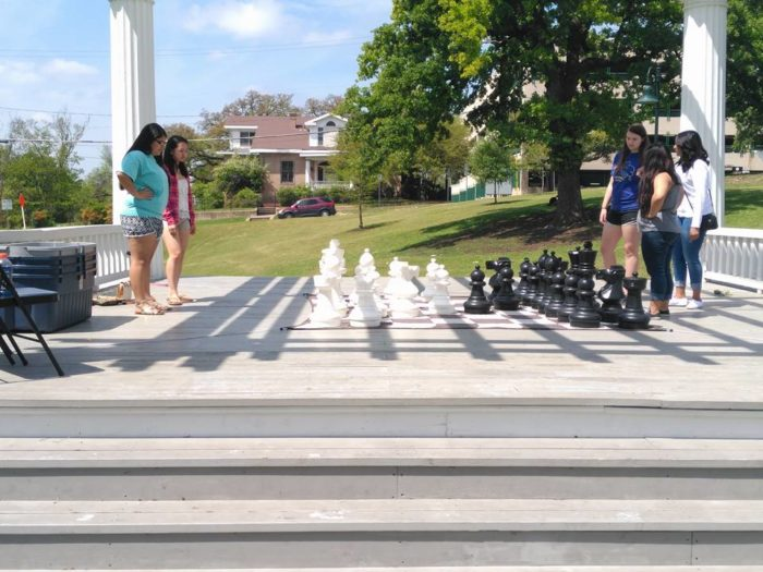 3.  Giant Chess at Wooldridge Park? We're in!