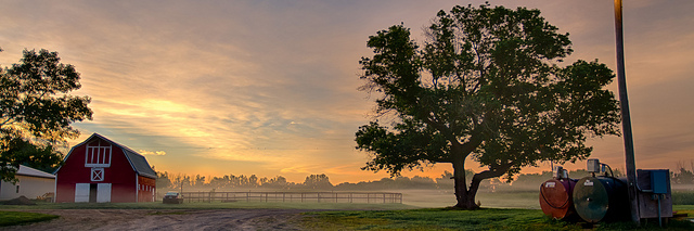 2. This foggy farm with the rising sun illuminating its foggy morning.