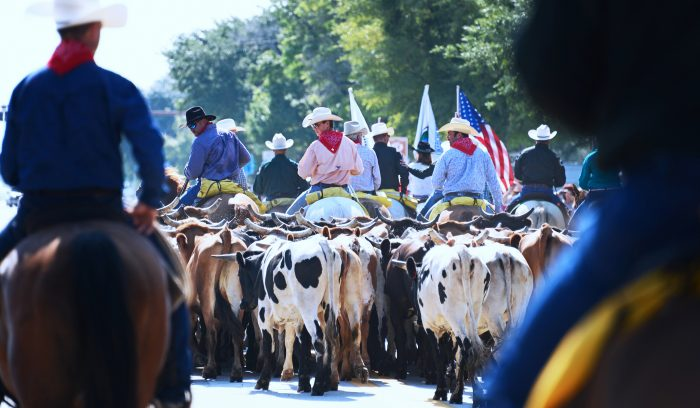 8. National Day of the American Cowboy being celebrated in Okeechobee.