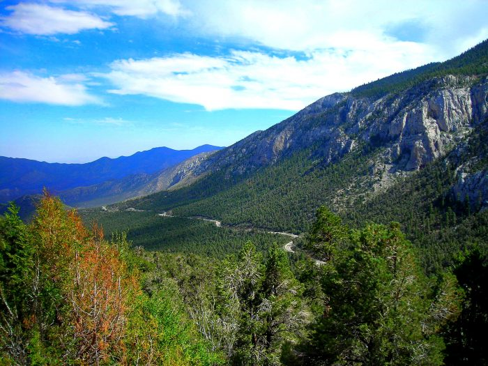 14. What a breathtaking view of Mt. Charleston! Mt. Charleston is the highest mountain in the Spring Mountains and Clark County.