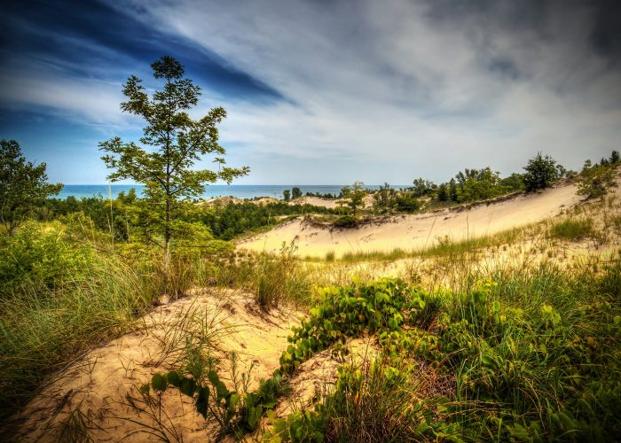 9. Discover the Indiana Dunes.