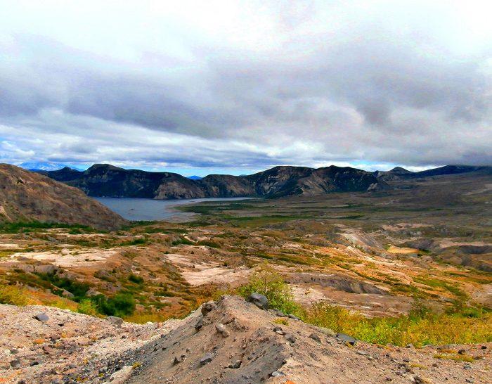 5. Harry's Ridge Trail