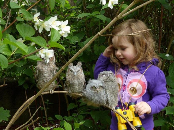 15. Make new feathered friends at Blue Hills Trailside Museum in Milton.