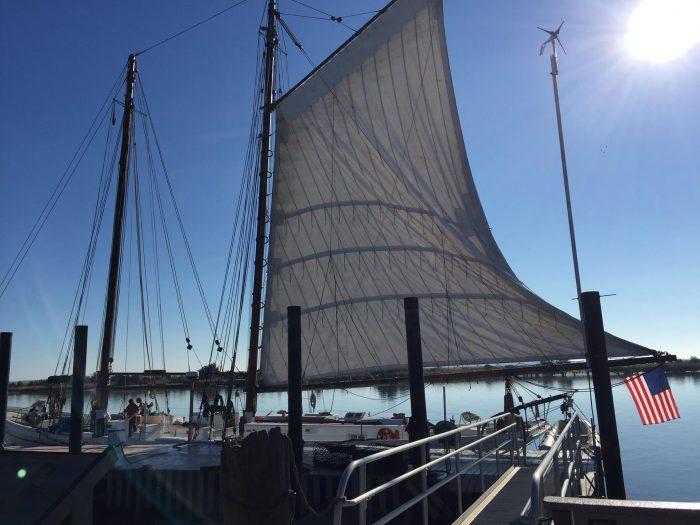 5. AJ Meerwald, Port Norris