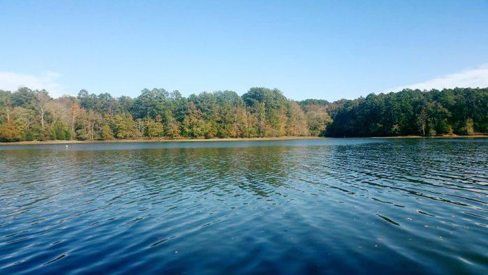 10. Pickwick Lake