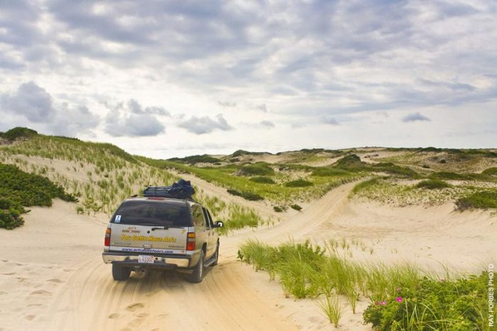 2. Go on an enchanting tour of the Provincetown dunes.