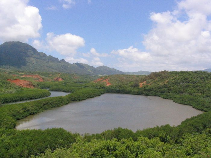 The Menehune worked at night so ancient Hawaiians would not discover them; their work would be abandoned if they were caught. Legend has it that the Menehune were capable of completing major projects in a single night, and they are credited with the construction of the Alekoko Fishpond, as well as the Menehune Ditch, an aqua duct on the Waimea River that funnels water for irrigation.