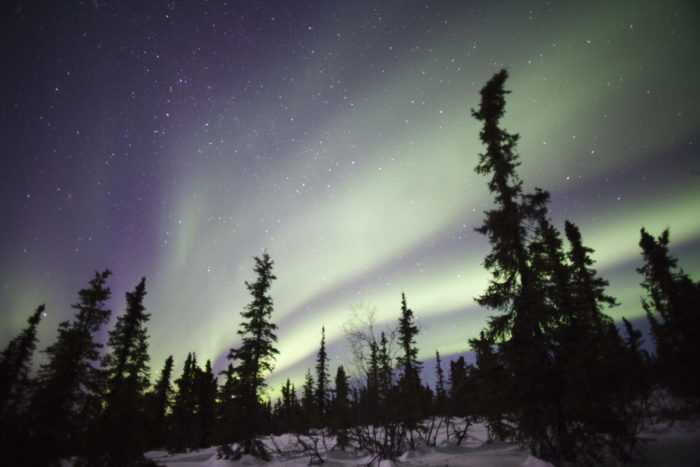 1. Northern Lights Tour Guide