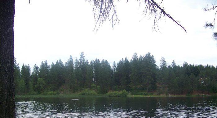 5. Bear Lake, Chattaroy
