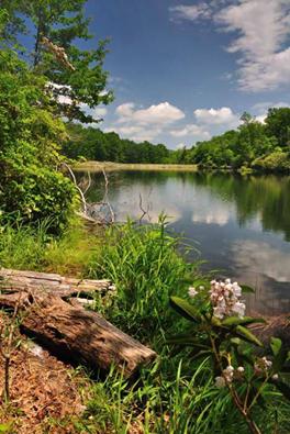 9. Boley Lake