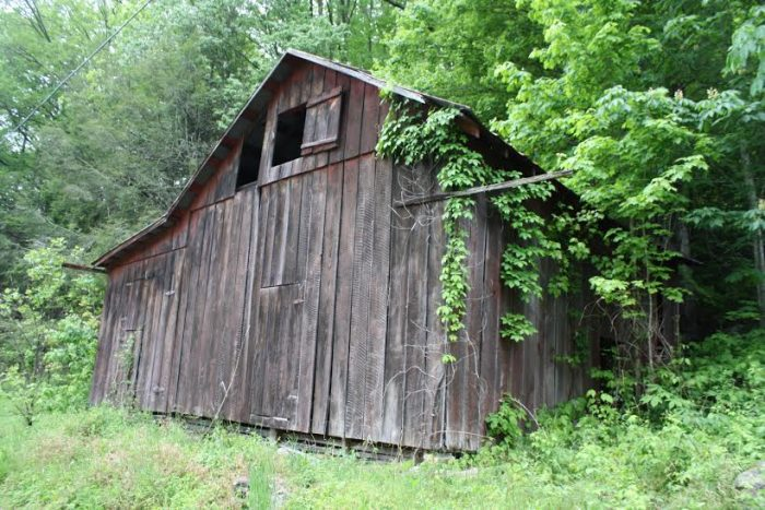 6. Brenda took this photograph of her father's tobacco barn.